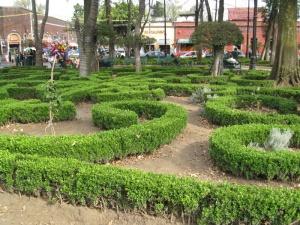 Gardens of Coyoacan